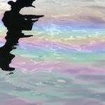 SÈTE. Pollution au gasoil sur l'étang de Thau